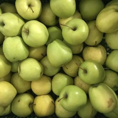 Valoriser les coproduits et déchets agricoles et alimentaires au niveau de la distribution et du commerce de détail : Mardi 25 mai 2021