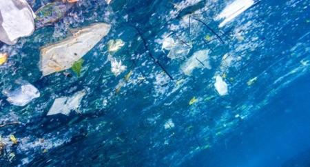Un nouvel outil d'analyse de l'empreinte environnementale des emballages