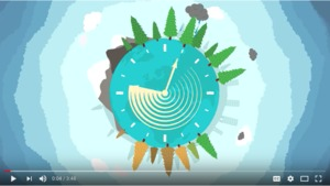 Re-thinking the economy: a video to explain the circular economy