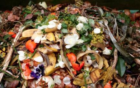 Biogaz : une énergie renouvelable à partir de déchets organiques