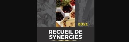 [Vu Ailleurs] Exemples inspirants de synergies en écologie industrielle et territoriale au Québec